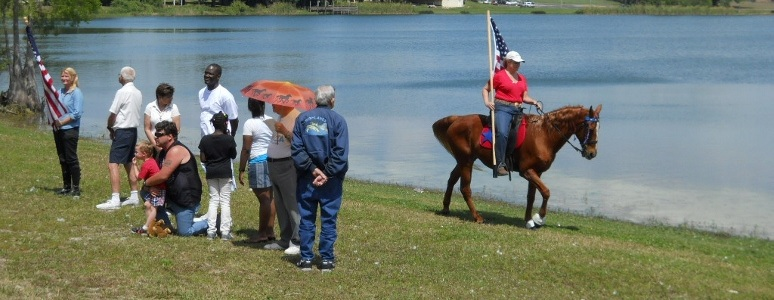 Image result for Florida Horses Webring